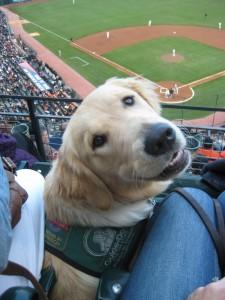 Loving Baseball!