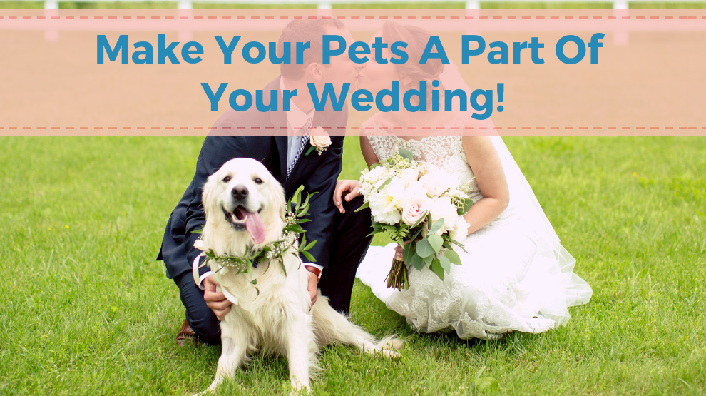 Make Your Pets A Part Of Your Wedding!