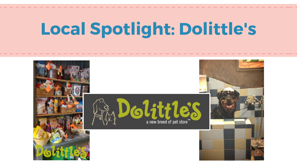 Local Spotlight: Dolittle's