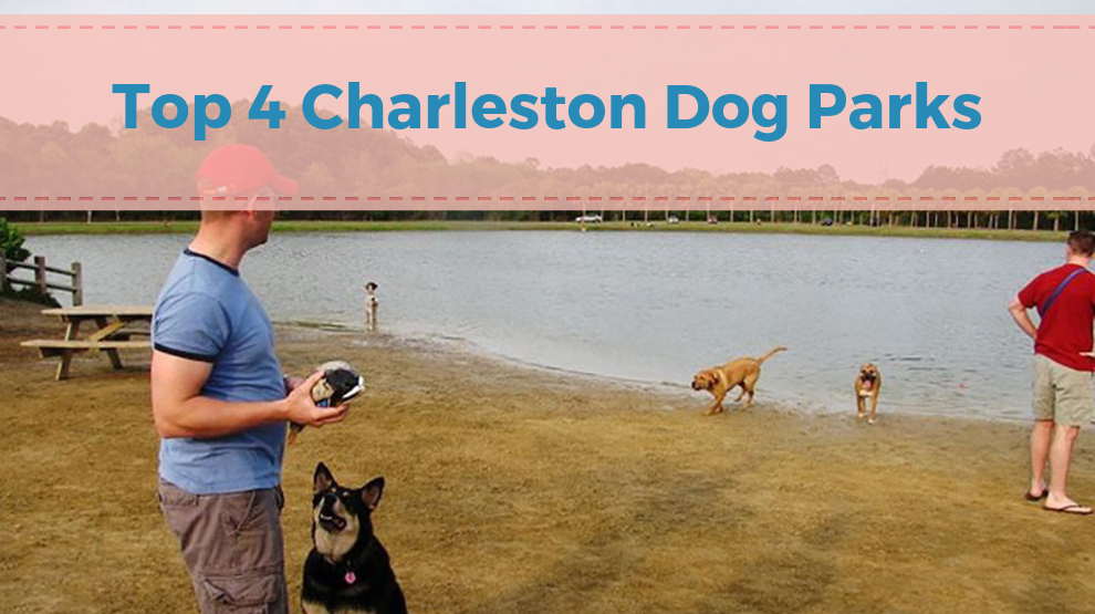 Top 4 Charleston Dog Parks