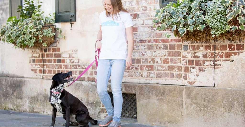 Trusted pet care