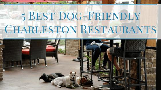5 Best Dog-Friendly Charleston Restaurants
