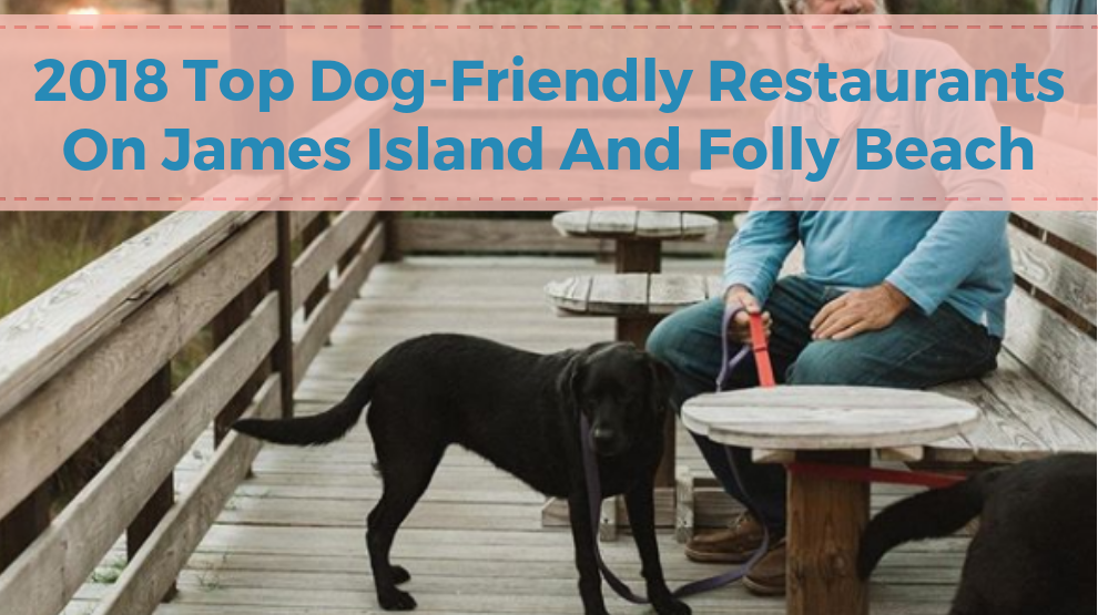 2018 Top 10 Dog-Friendly Restaurants on James Island and Folly Beach