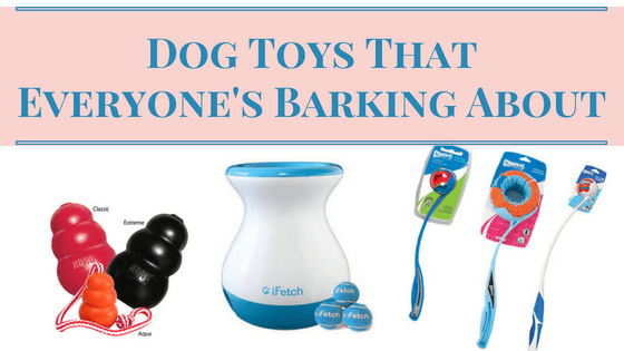 Dog Toys Everyone's Barking About