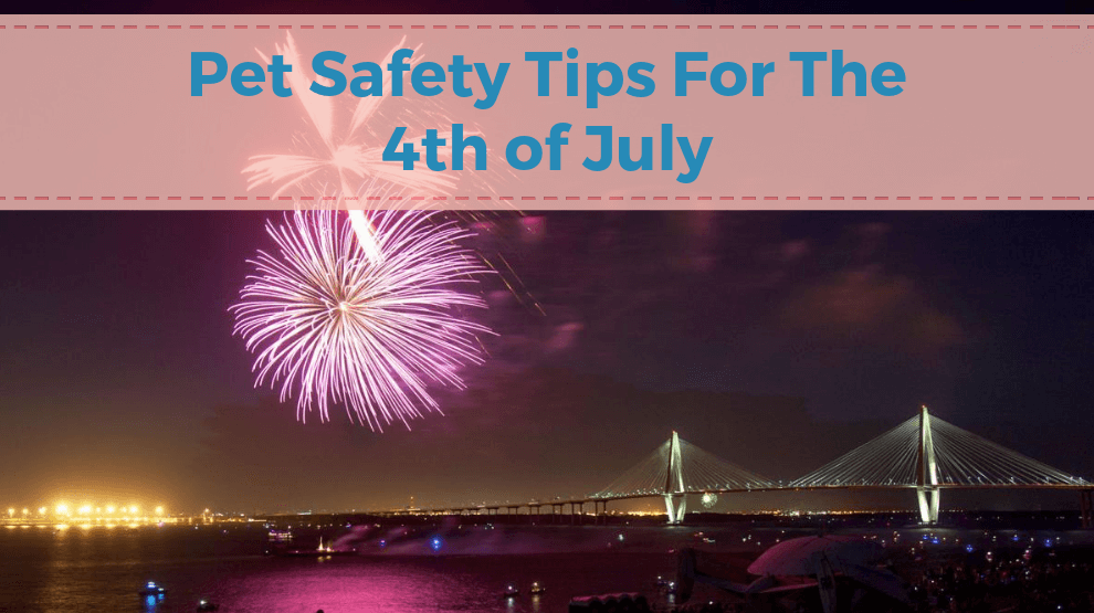 Pet Safety Tips for the 4th of July