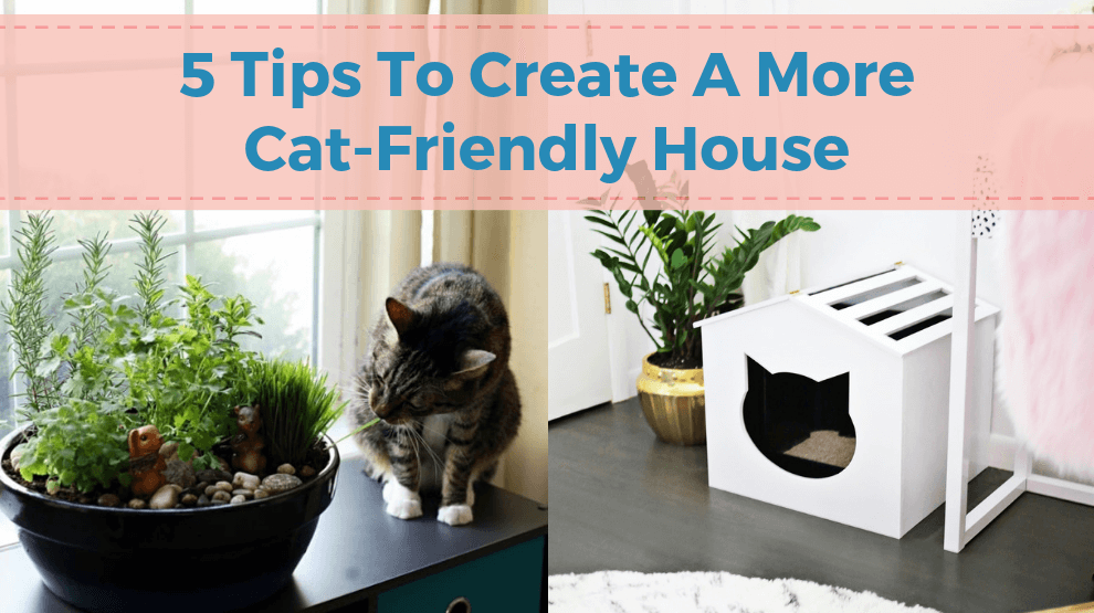 5 Tips To Create A More Cat-Friendly House